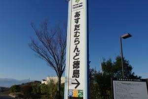 IMGP0324
