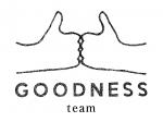 GDNSteam_logo