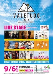 VALETUDO2015