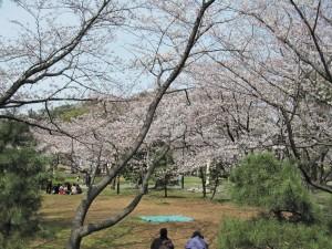02徳島中央公園