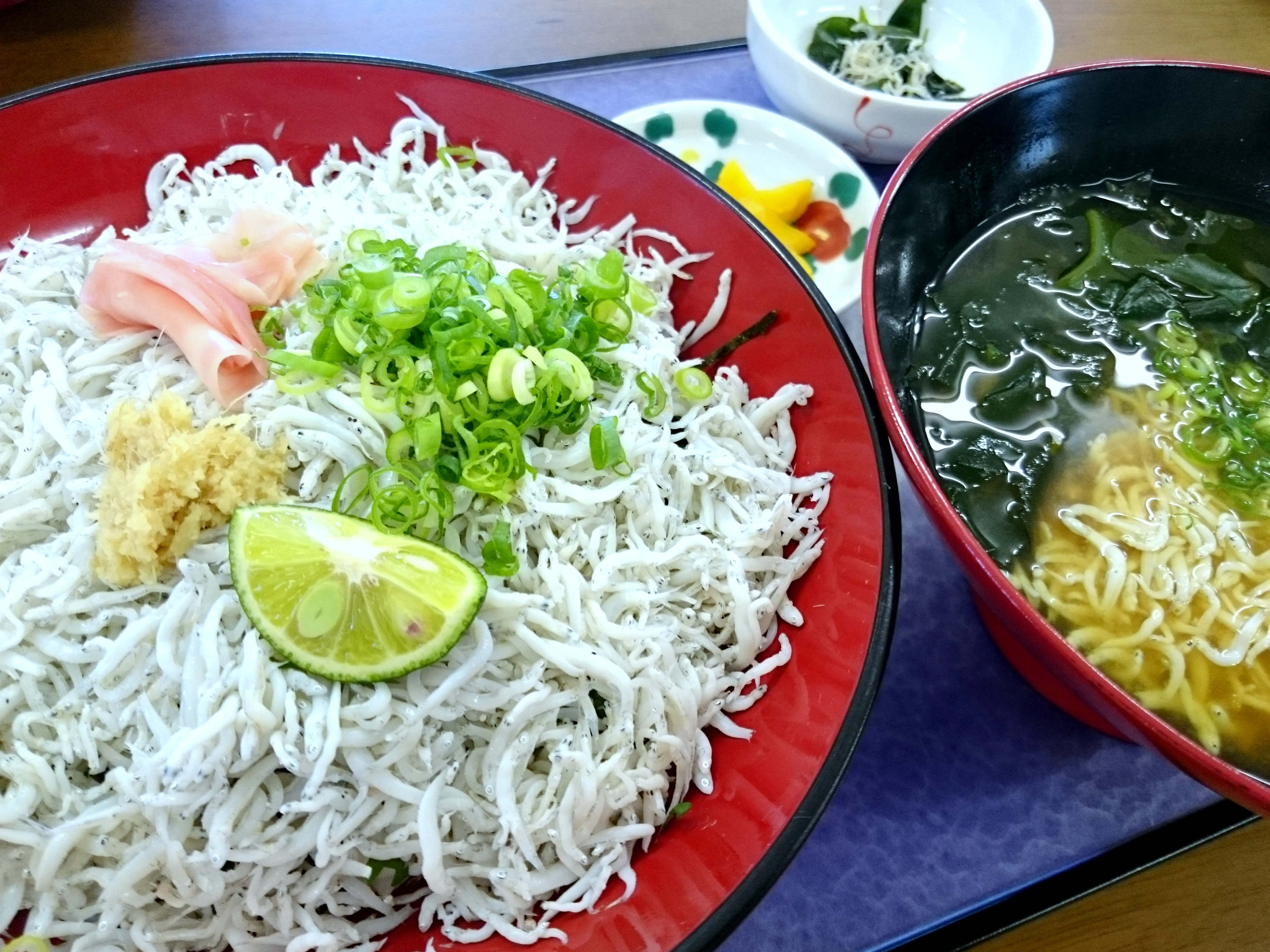 わざわざ行く価値あり!白く輝く、和田島の絶品しらす丼