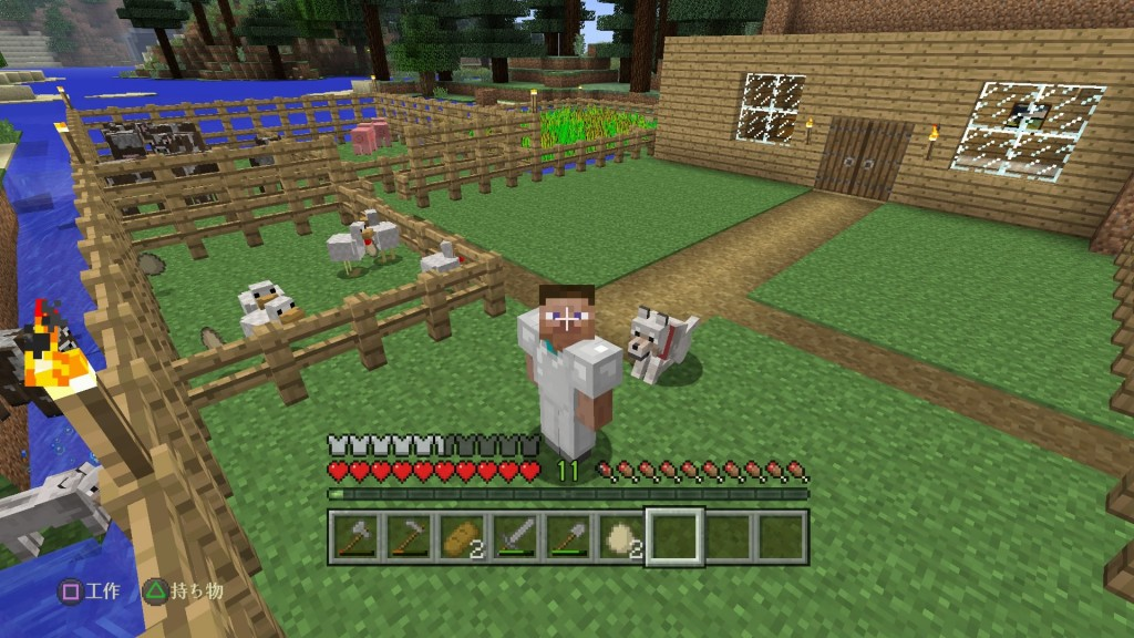 Minecraft: PlayStation®4 Edition_20161129232915