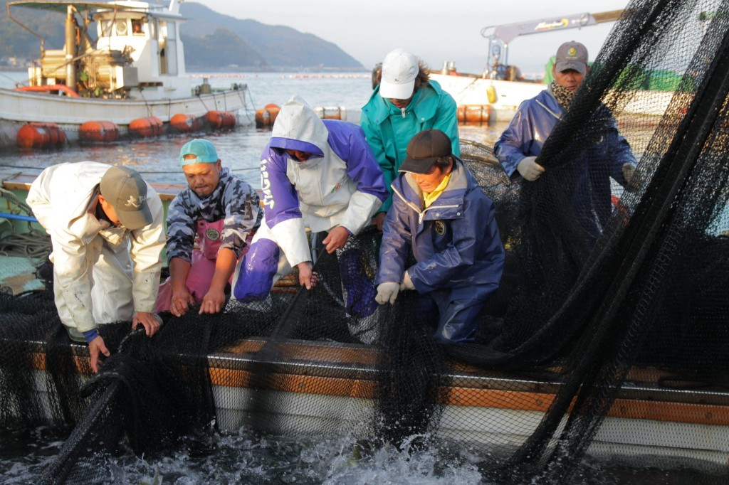 とくしま漁業アカデミー 平成30年度入学の研修生を募集中です!