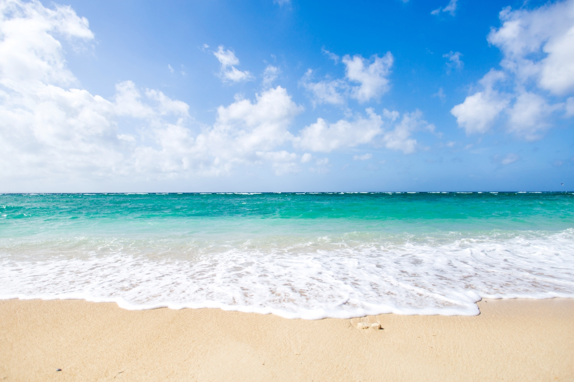 徳島にいながらバカンス気分! デートにぴったり砂浜BAR