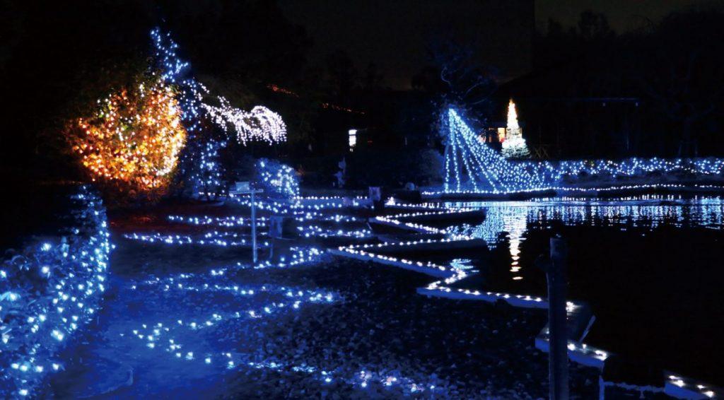 《まとめ》2019-2020最新/徳島のイルミネーションスポット情報!! 冬を彩るロマンチックな絶景を見に行こう♪