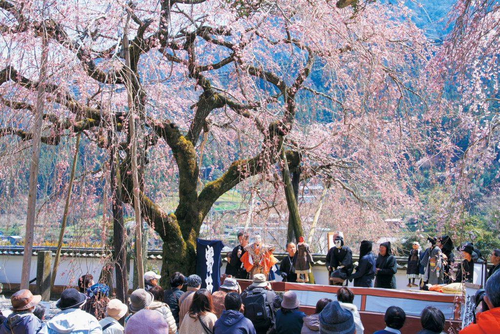 《まとめ》花見イベント2019! 至急チェックを! 今週末が桜の見頃かも♪ イベントと合わせて目一杯楽しもう。家族やお友達とお出かけしてね
