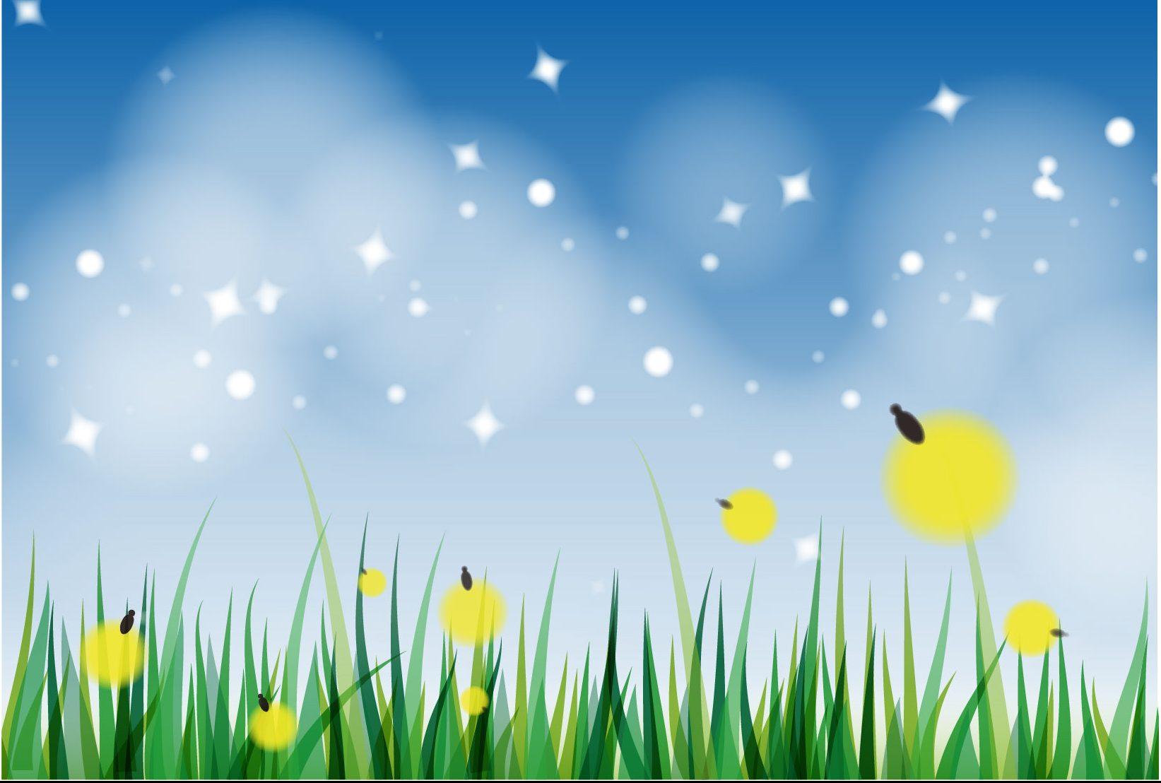 《まとめ》初夏のレジャーならコレだ! 徳島のホタル観賞イベント7選。ロマンチックな光景×楽しいイベントはこの時期だけ!
