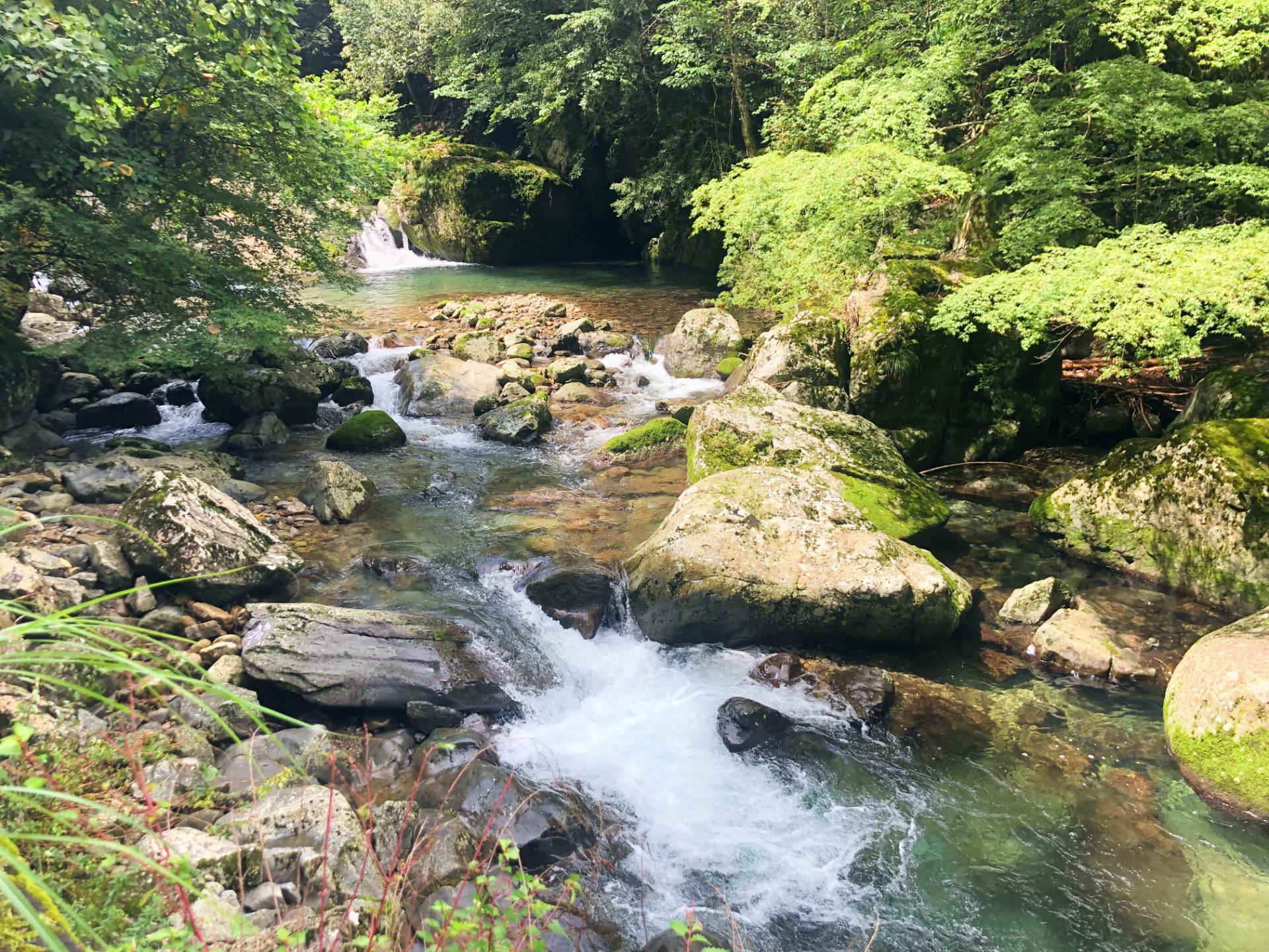 《勝浦町》疲れ切ったオタクライターが訪れた徳島の秘境の地