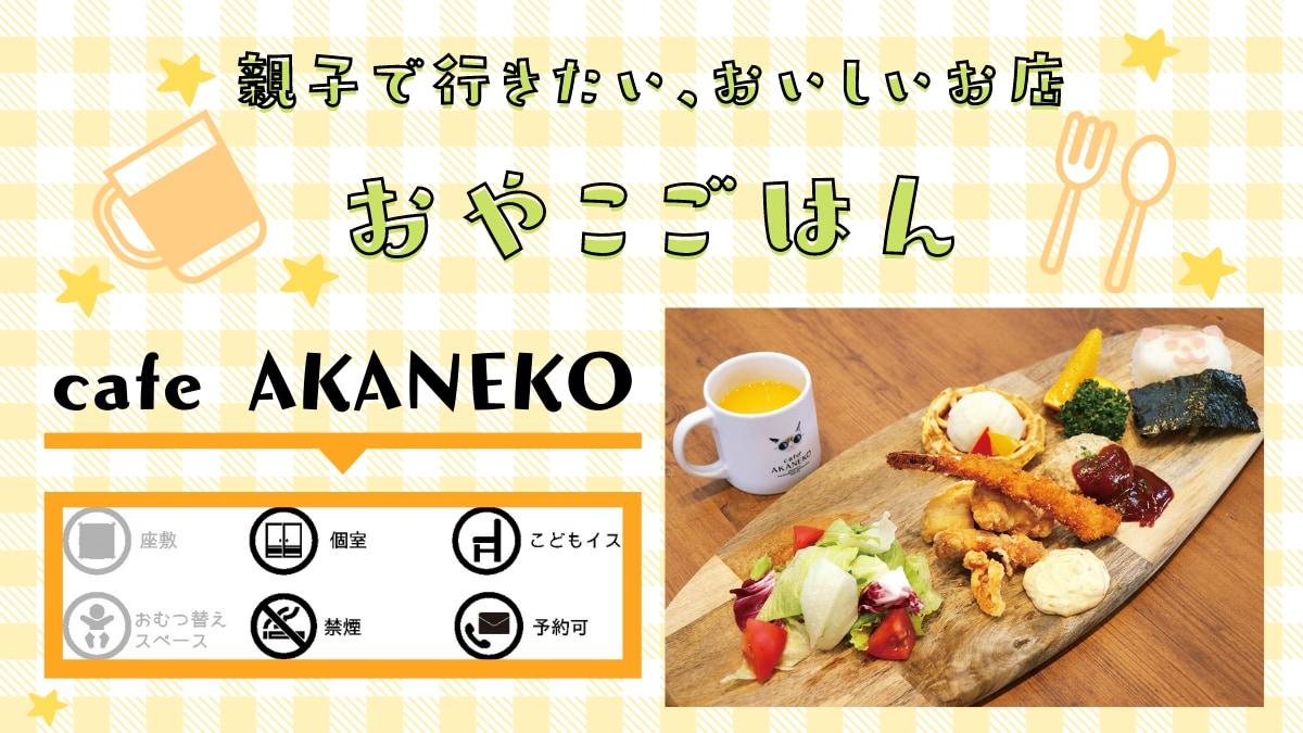《おやこごはん/徳島市》cafe AKANEKO(アカネコ)