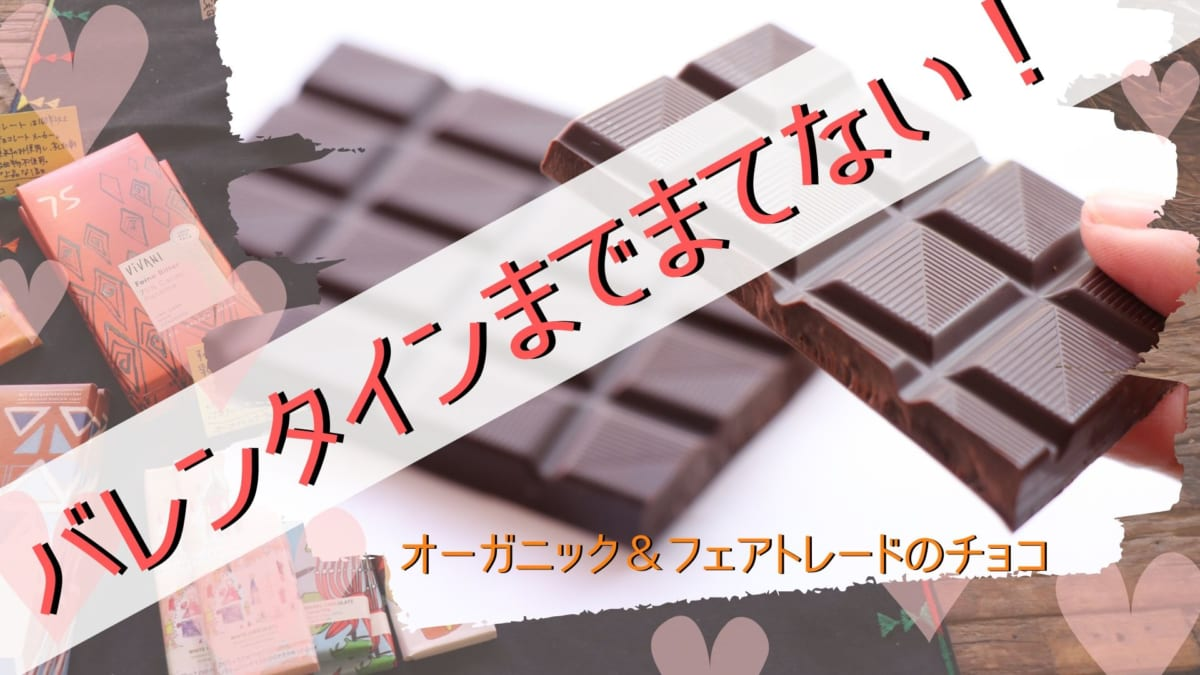 《徳島市/chitree(チーツリー)》バレンタインまで待てない!大切な人に、自分にもあげたいオーガニック&フェアトレードのチョコ