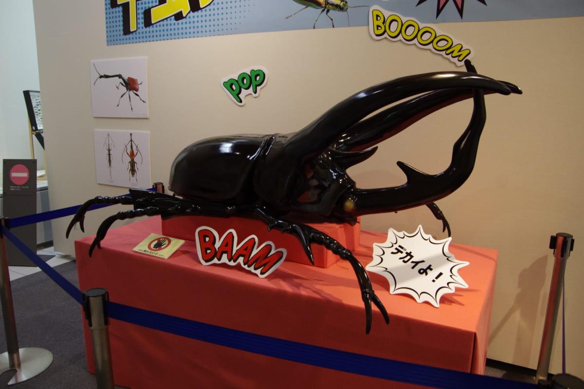 【香川照之さんに届けたいぜ!!】徳島県立博物館『甲虫すごいぜ!』に絶対行くべき「すごいぜ!」ポイントを伝授するぜ!
