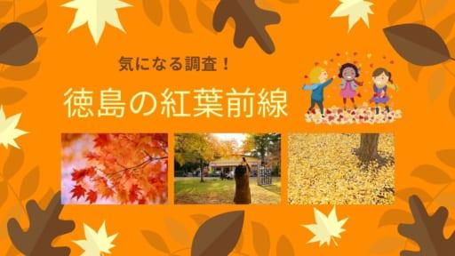 【おでかけ】徳島の紅葉前線を調査!