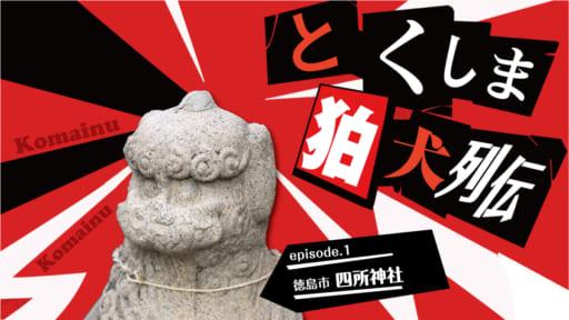 《徳島探訪》とくしま狛犬列伝 「徳島市 四所神社」