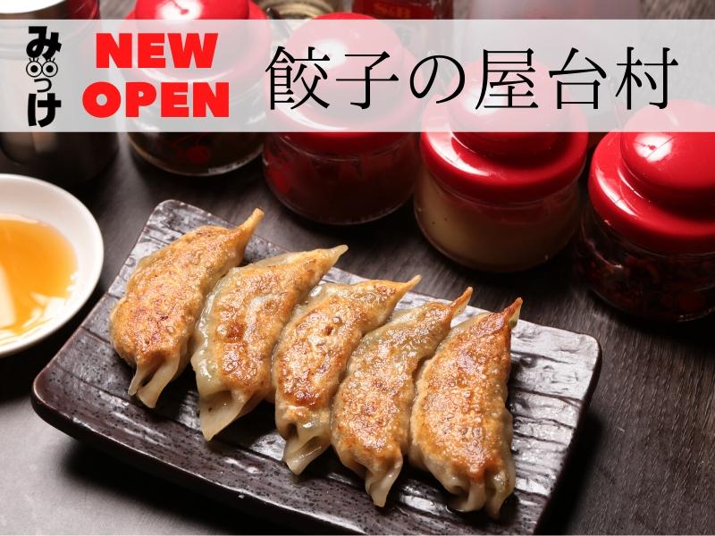 【4月OPEN】餃子の屋台村(徳島市栄町)うまい餃子でビールがすすむ! いろんな食べ方を創意工夫しよう