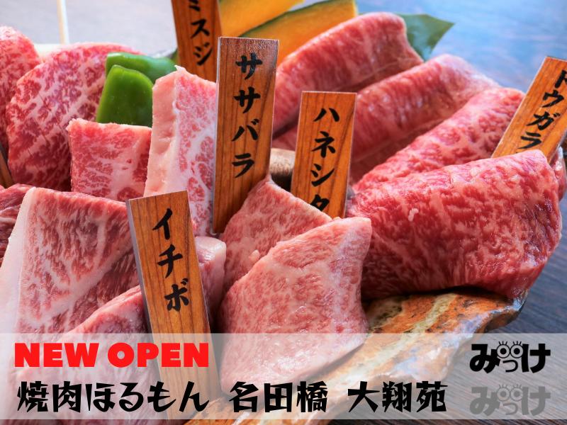 【7月OPEN】焼肉ほるもん 名田橋 大翔苑(板野郡藍住町/だいしょうえん)部位で違う黒毛和牛の味わいを食べ比べしよう!