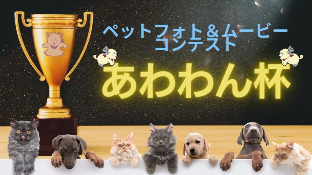日刊あわわpresents♪ペットフォト&ムービーコンテスト『あわわん杯』開催‼