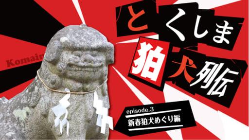 《徳島探訪》とくしま狛犬列伝  新春狛犬めぐり編