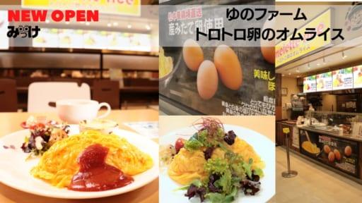 【11月OPEN】ゆのファーム トロトロ卵のオムライス(板野郡北島町)野菜もしっかり食べられる、ヘルシー志向のオムライス。