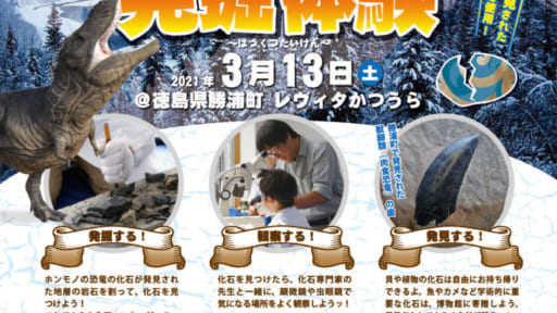 恐竜の化石 発掘体験[3/8予約締切]