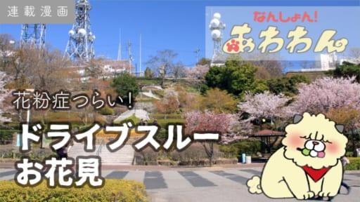 【連載漫画】花粉症つらい!意地でもお花見、ドライブスルー。【なんしょん!あわわん 】-009-