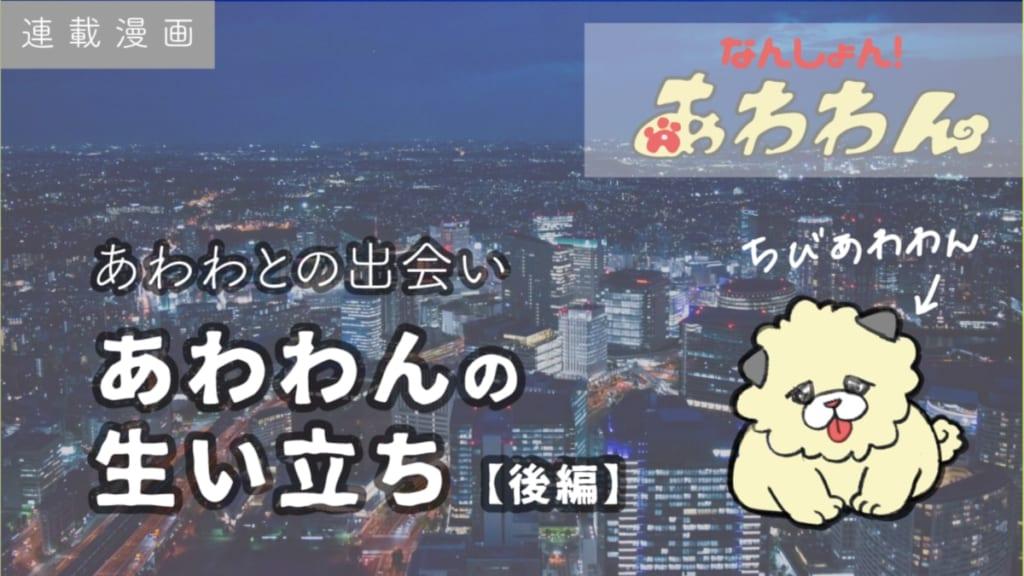 【連載漫画】あわわんの生い立ち‐後編【なんしょん!あわわん 】-013-