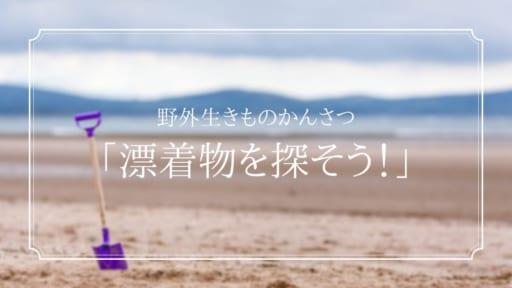 野外生きものかんさつ「漂着物を探そう!」[7/22申込締切]