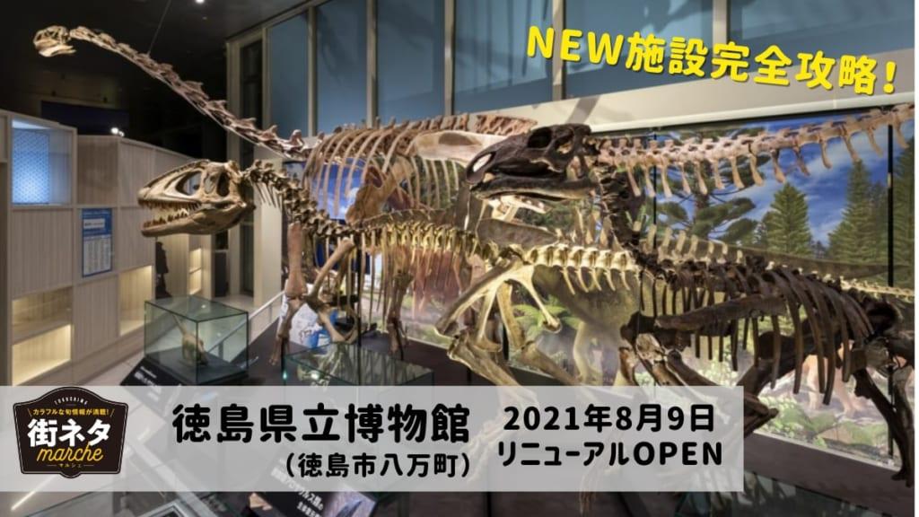 【8月9日リニューアルOPEN】徳島県立博物館(徳島市八万町)